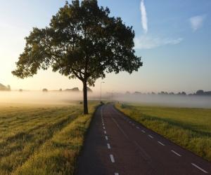 road-1245901_1280 (2)