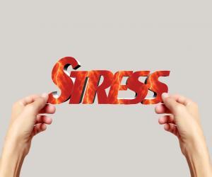 Jak radzić sobie ze stresem podczas przeprowadzki? Nasze porady